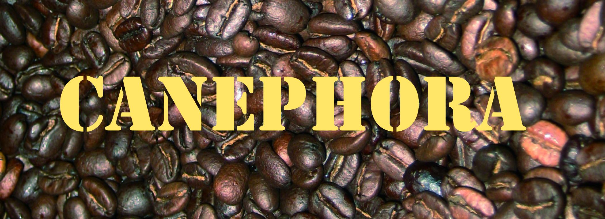 canephora