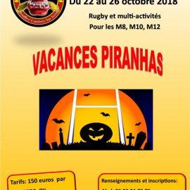Grand retour du stage Piranhas